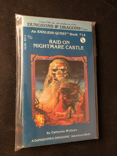 Raid on Nightmare Castle: An Endless Quest Book #14; A DUNGEONS & DRAGONS ADVENTURE BOOK. Catherine MCGUIRE.