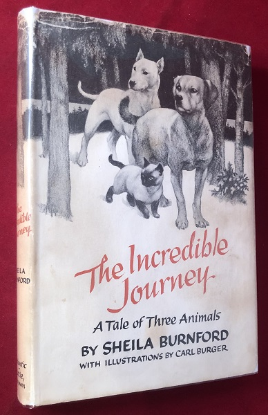 The Incredible Journey (STATED FIRST EDITION). Sheila BURNFORD.