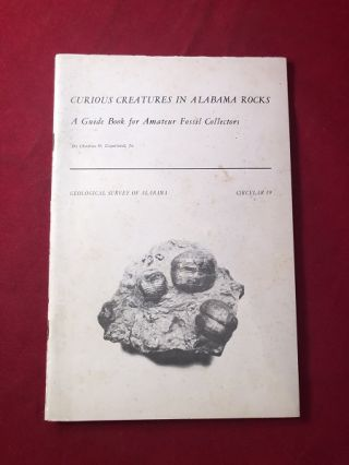 Curious Creatures in Alabama Rocks: A Guidebook for Amateur Fossil Collectors. Charles W. COPELAND